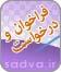 1 Icon Farakhan